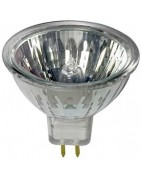 Halogen MR11 (35mm) Light Bulb