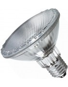 Halogen PAR 20/30/38 Light Bulb